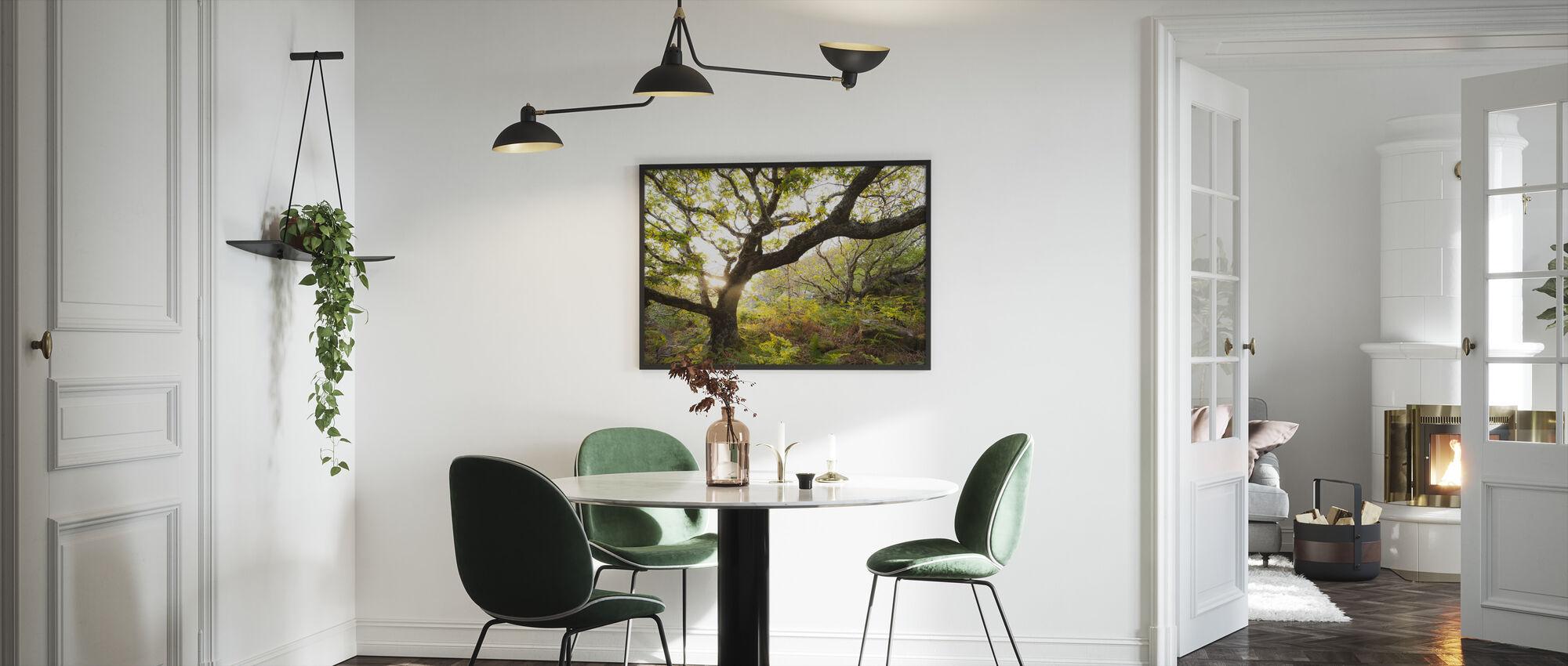 Suuri Tammi Puu - Kehystetty kuva - Keittiö