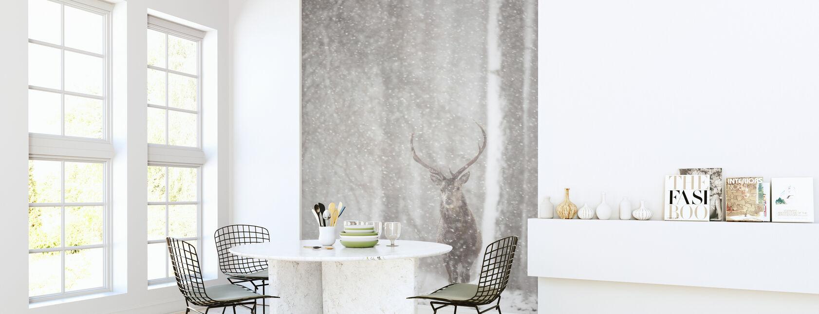 Red Deer in Heavy Snowfall - Wallpaper - Kitchen