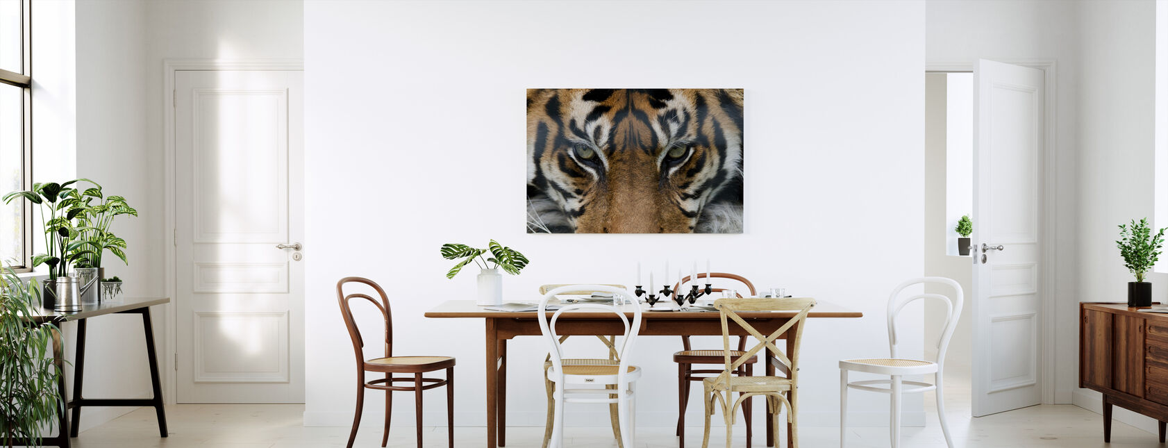 Eye of the Tiger - Canvas print - Kitchen