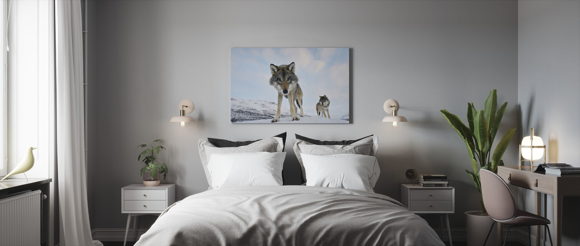 Interested Grey Wolf - Canvas print - Bedroom