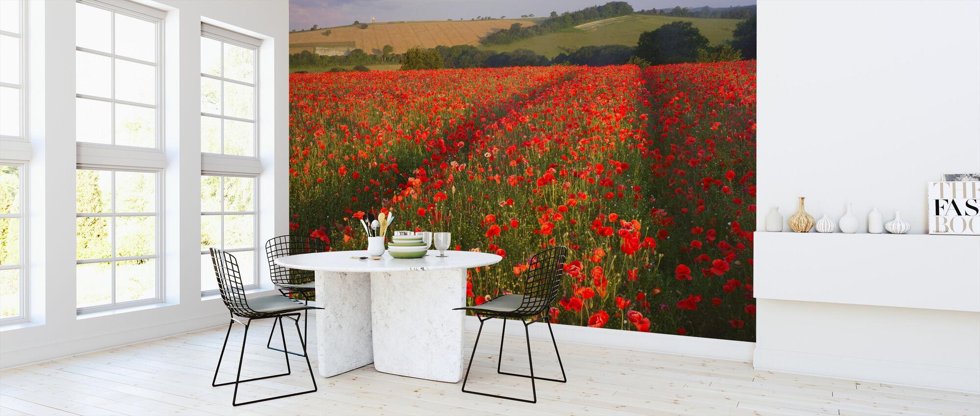 Scarlet Field - Wallpaper - Kitchen