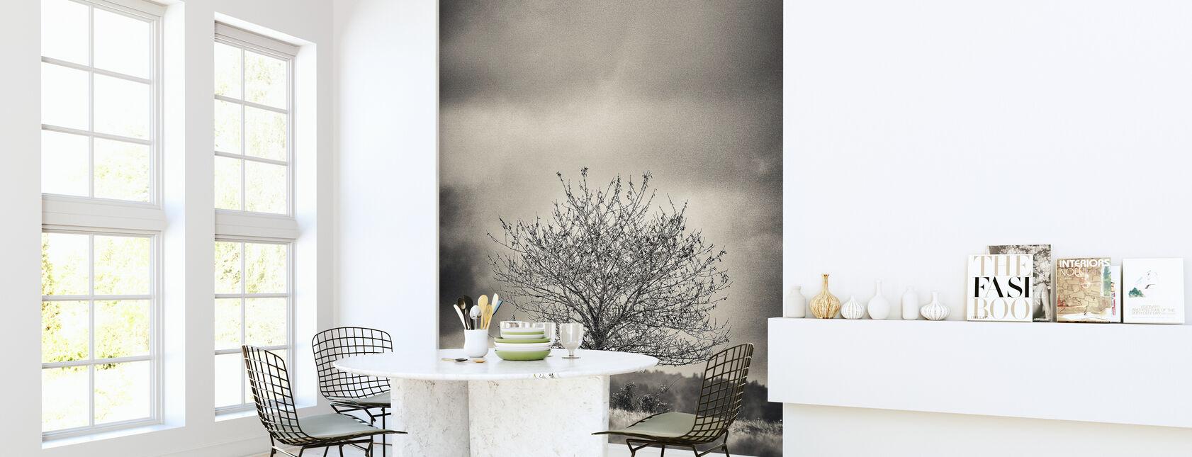 Træ i Halland - Sverige - Tapet - Køkken