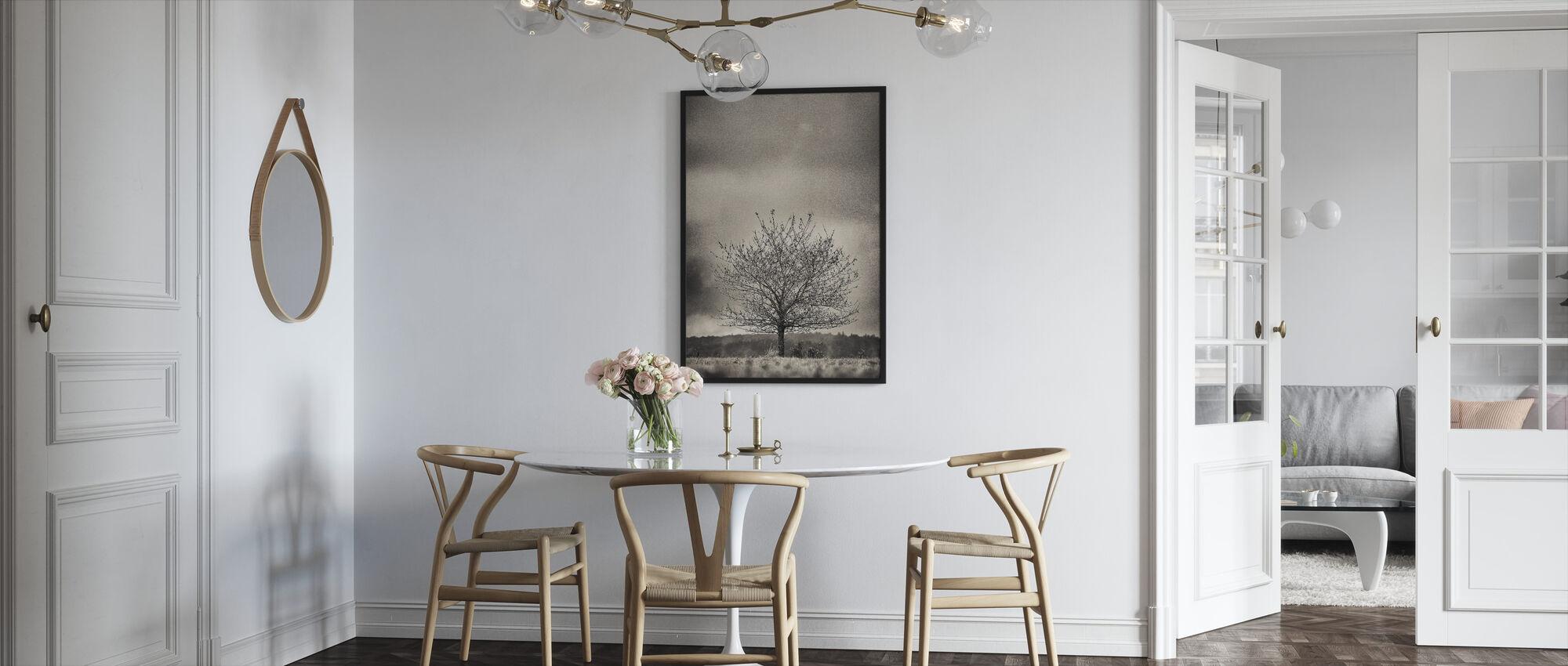 Puu Hallandissa - Ruotsi - Kehystetty kuva - Keittiö