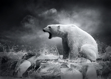 Fototapet - White Polar Bear Hunter