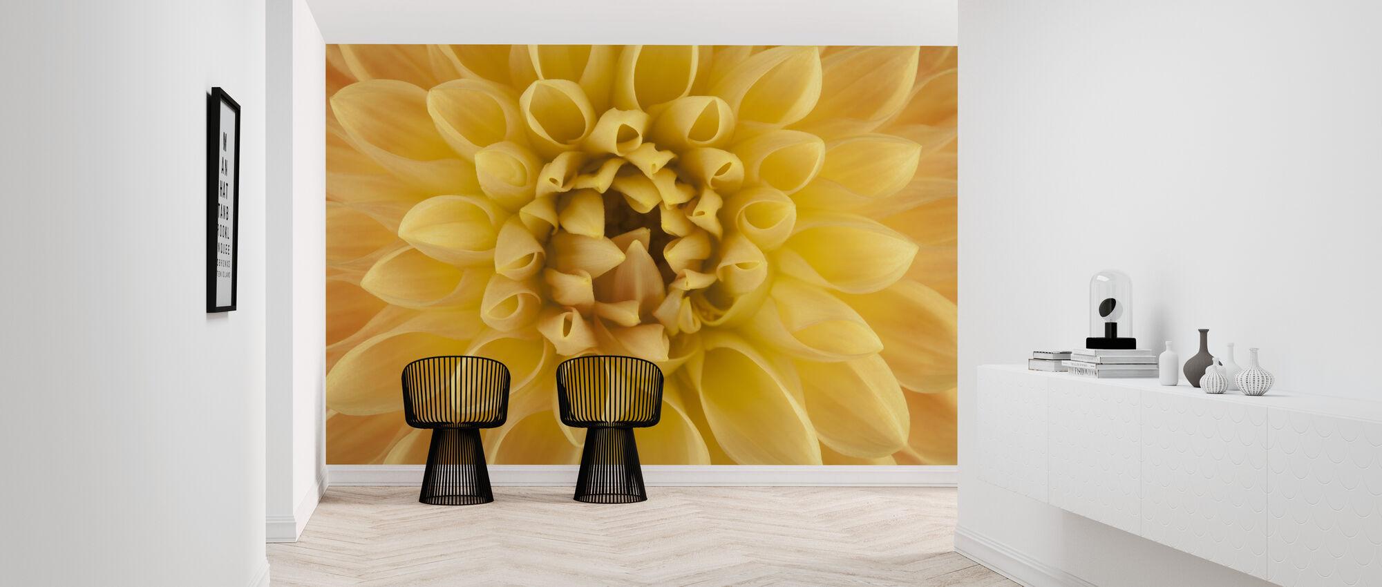 Amber Dahlia - Wallpaper - Hallway