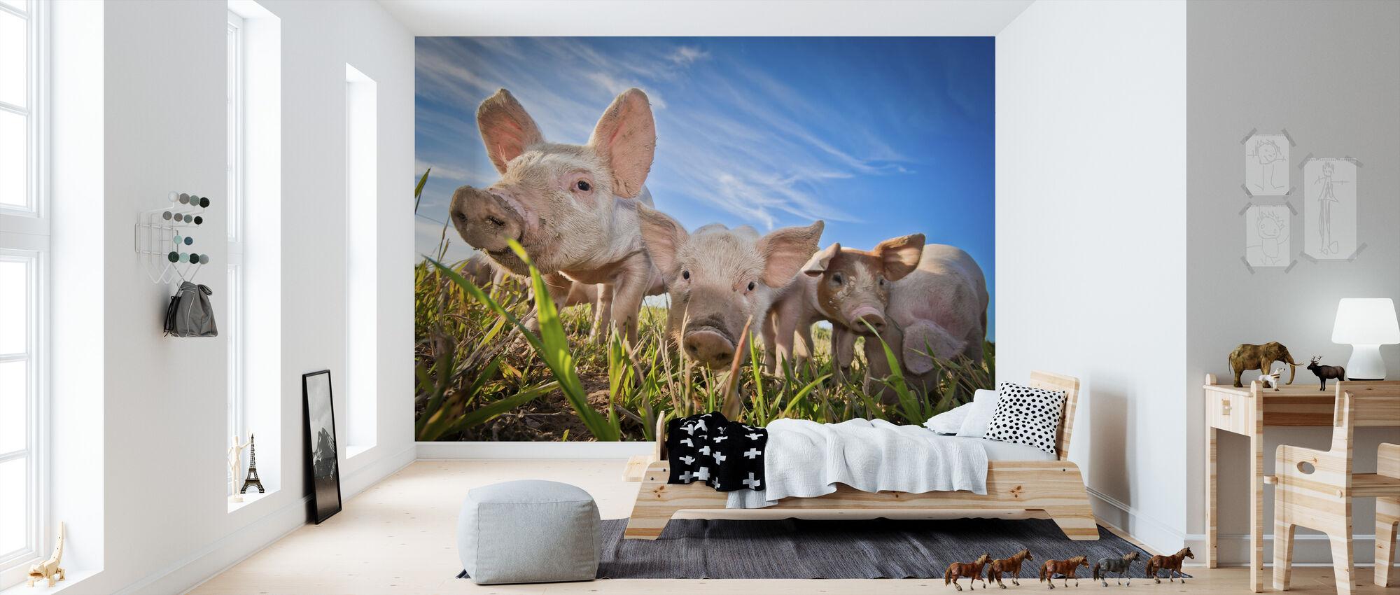 Nosy - Wallpaper - Kids Room