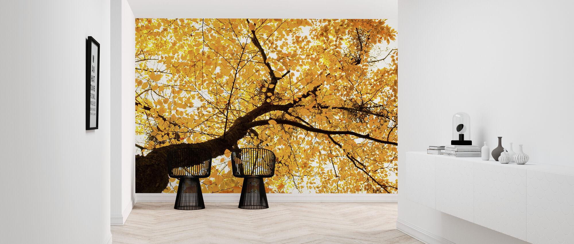 Golden Leaves - Wallpaper - Hallway