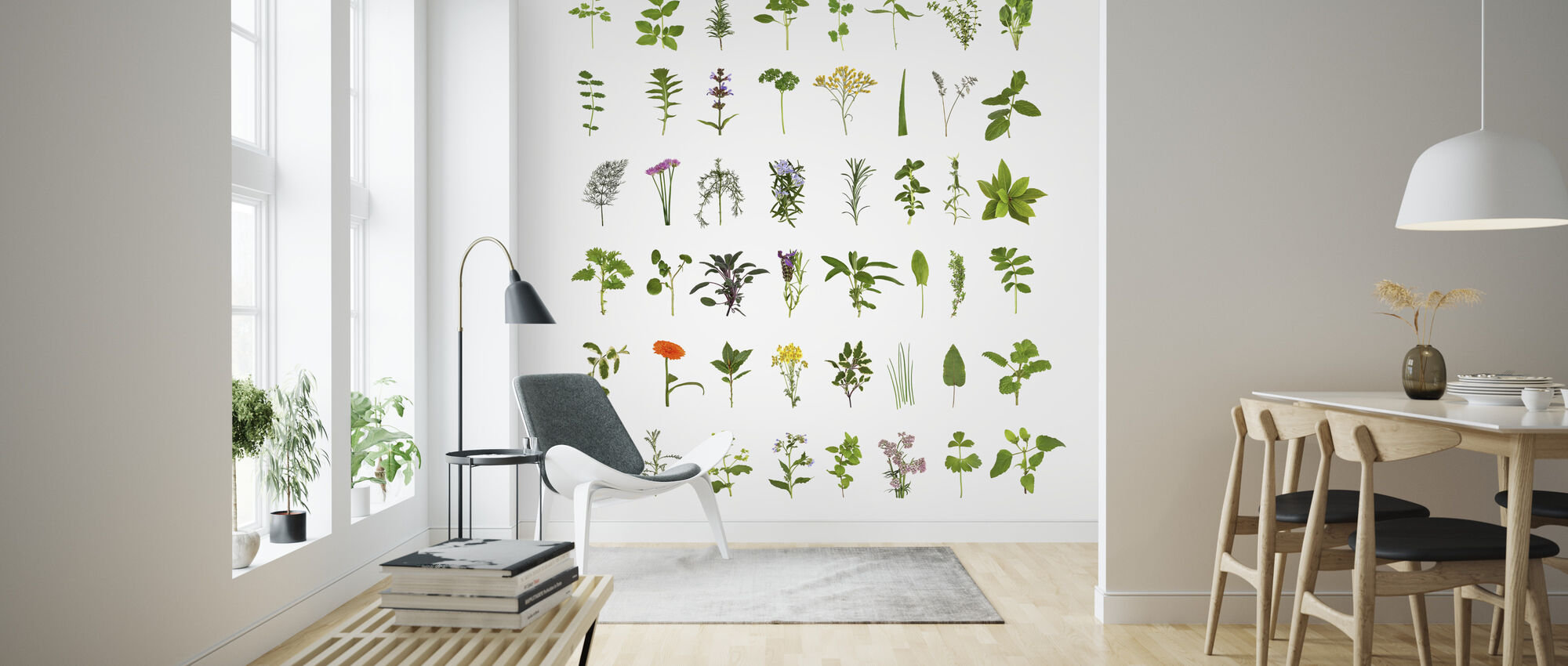 Herb and Flower Collection - Wallpaper - Living Room