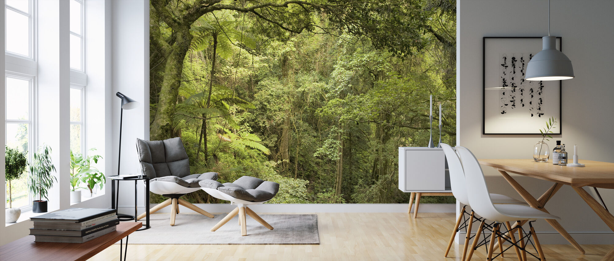 Bunya Mountains National Park - Wallpaper - Living Room