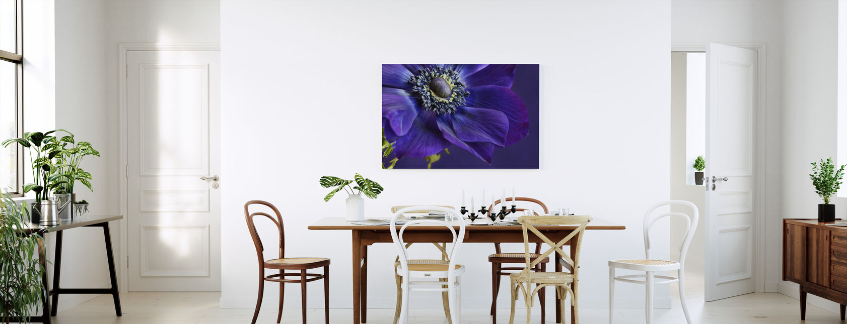 Indigo Anemone - Canvas print - Kitchen