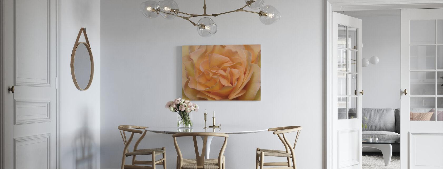 Orange Rose - Canvas print - Kitchen