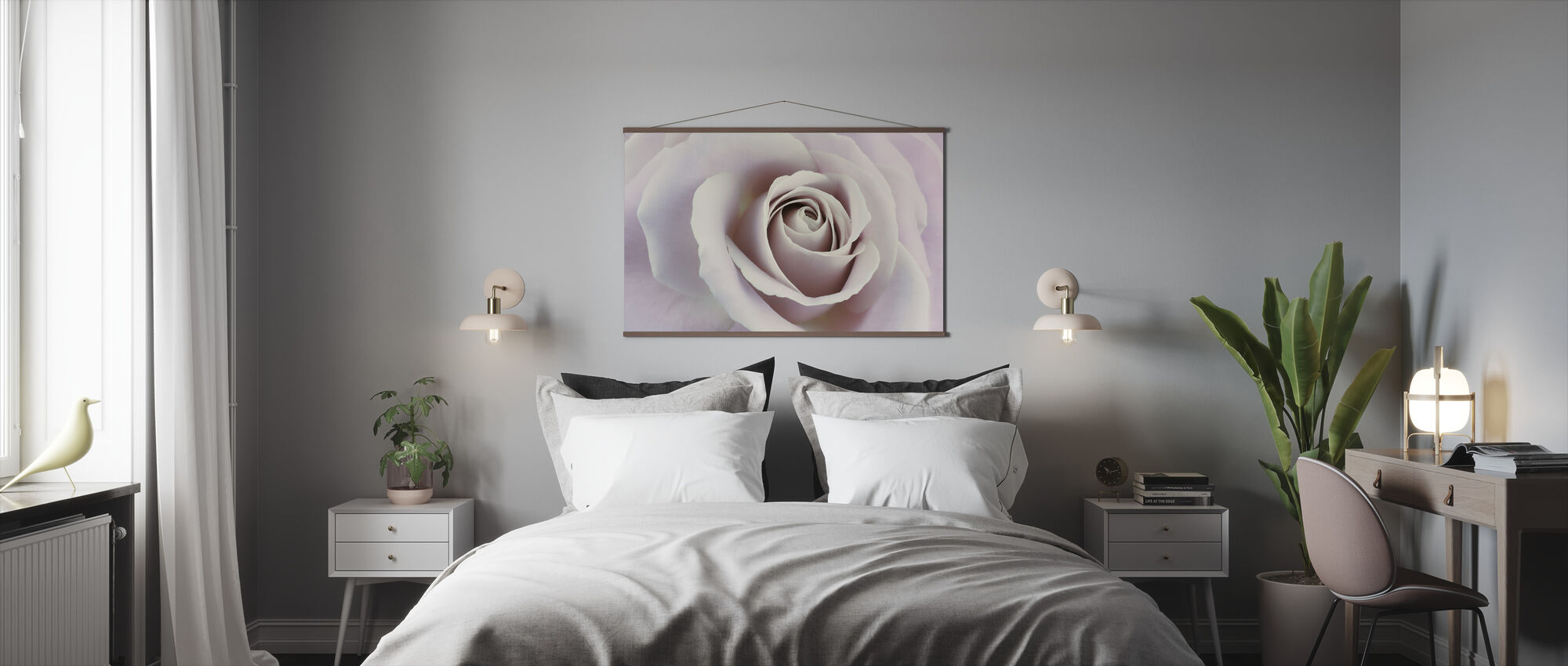 Soft Rose in Cool Shades - Poster - Bedroom