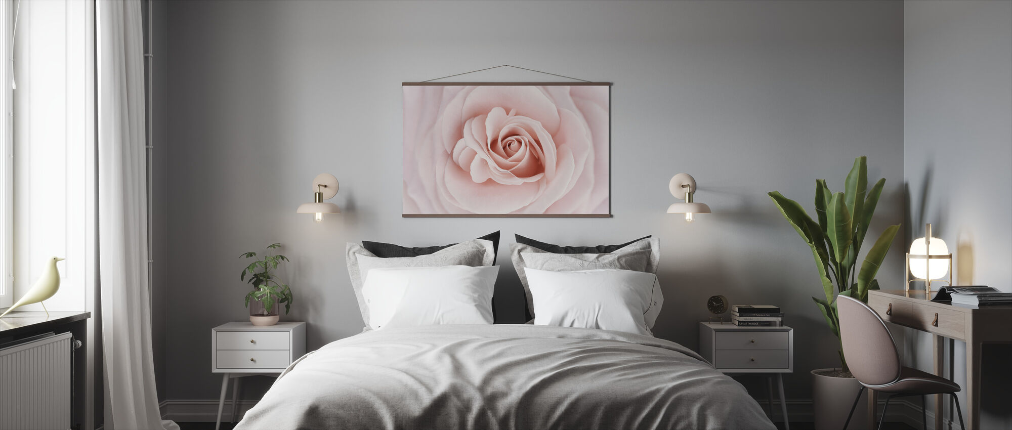 Soft Rose in Peach Pink Shades - Poster - Bedroom