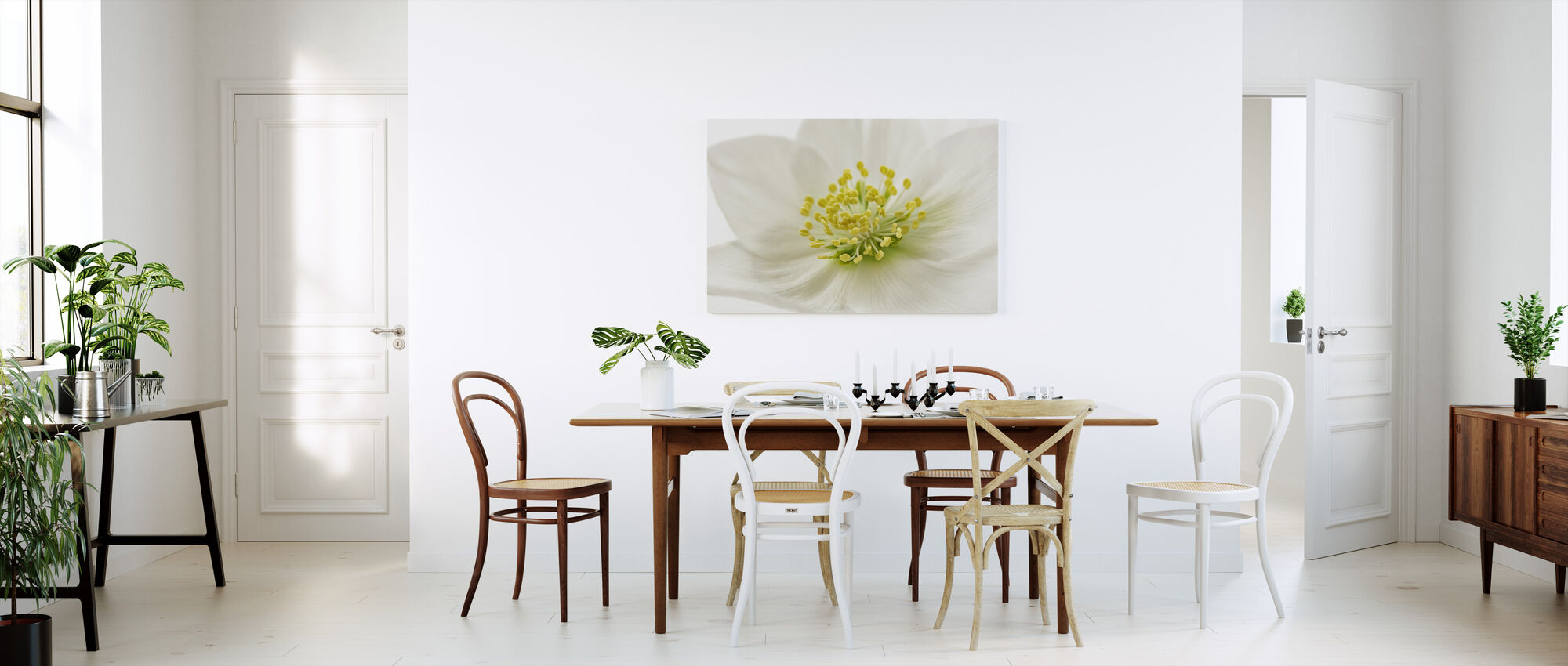 White Christmas Rose - Canvas print - Kitchen