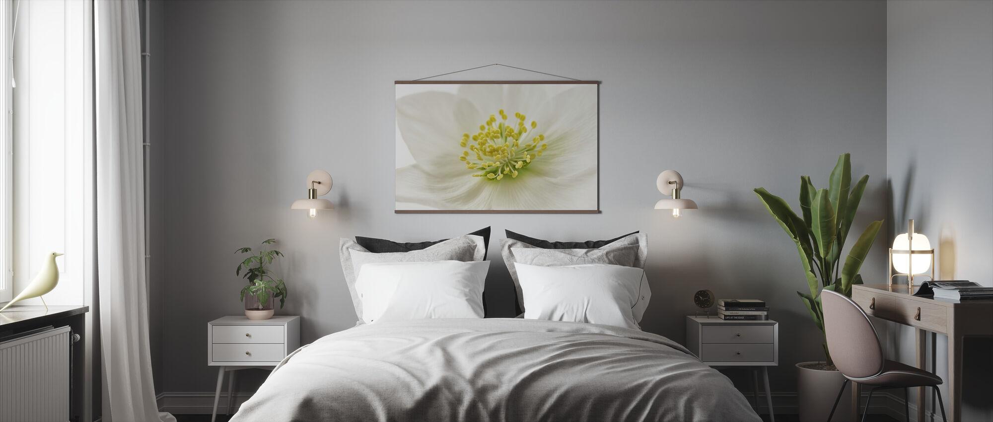 Valkoinen joulu Ruusu - Juliste - Makuuhuone