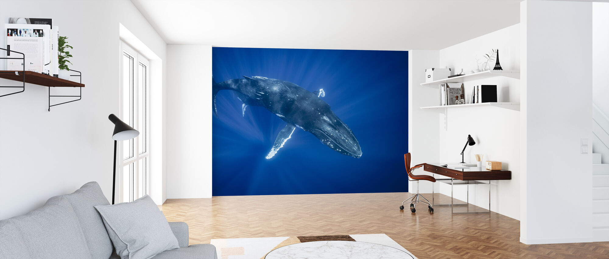 Majestic Humpback Whale - Wallpaper - Office