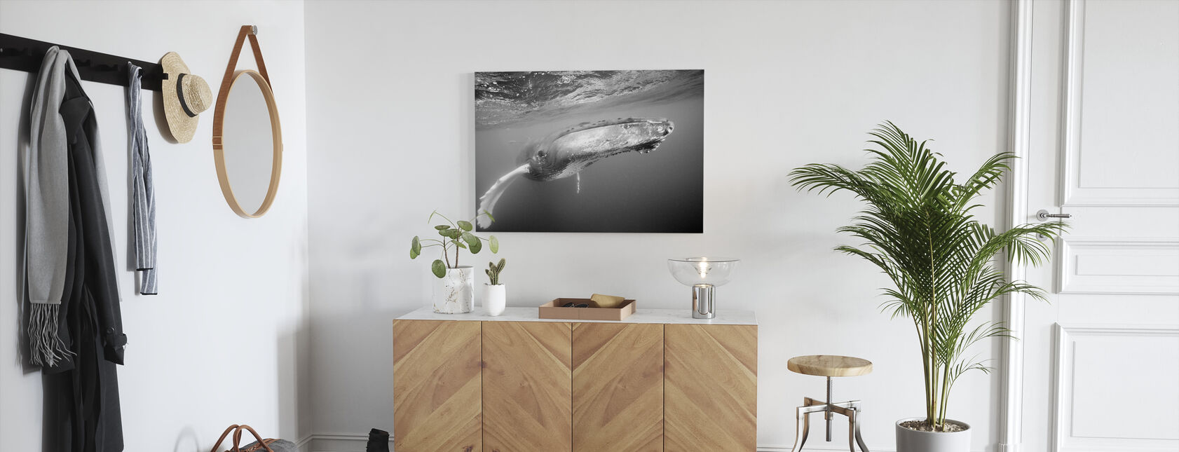Humpback Whale - Canvas print - Hallway