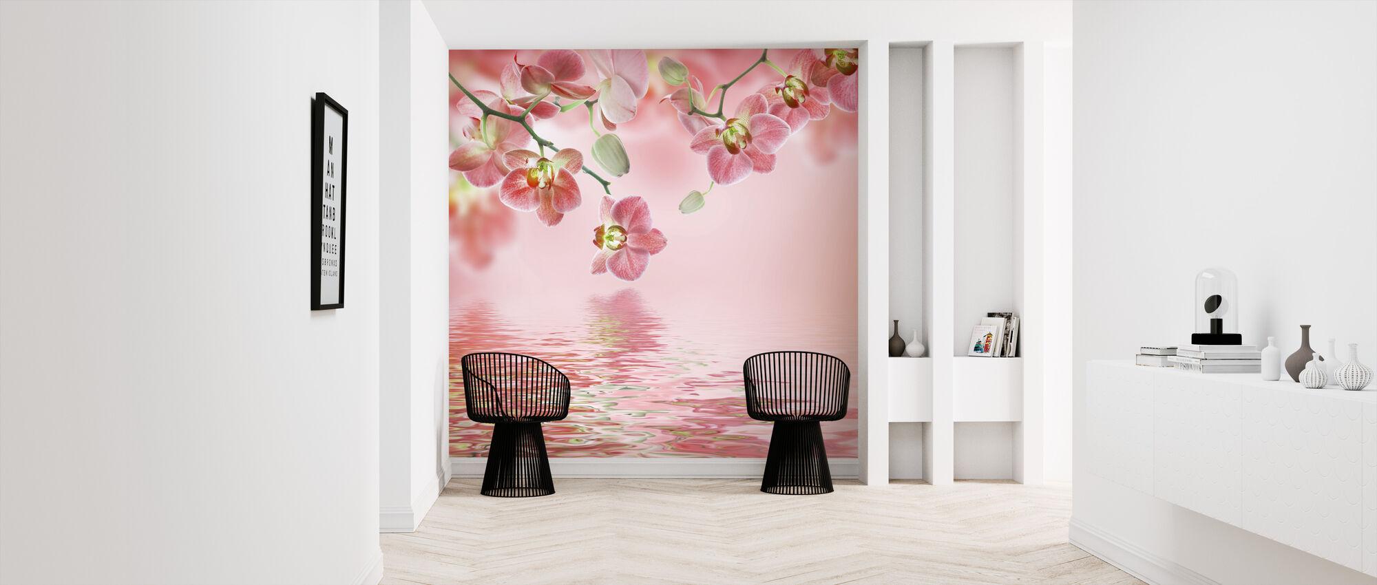 Tropisk lyserød orkidé - Tapet - Entré