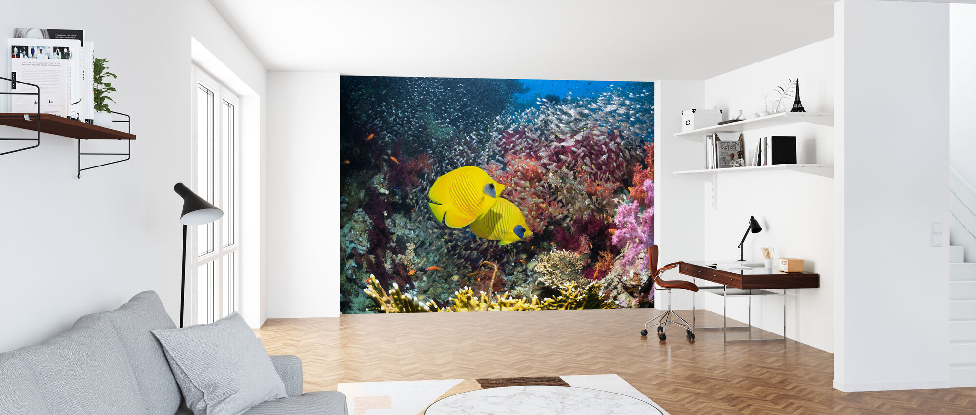 Coral Reef Scenery - Wallpaper - Office