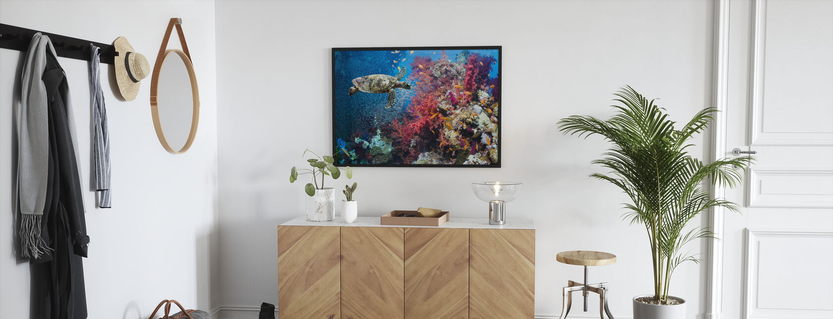 Turtle and Corals - Framed print - Hallway