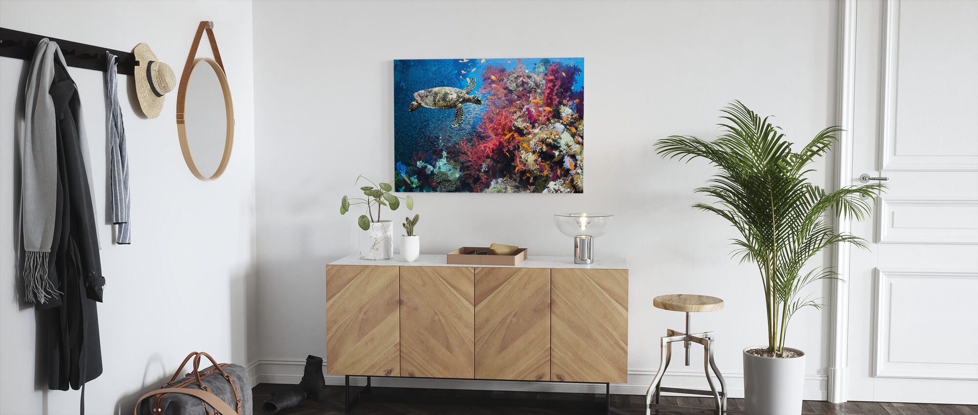 Turtle and Corals - Canvas print - Hallway
