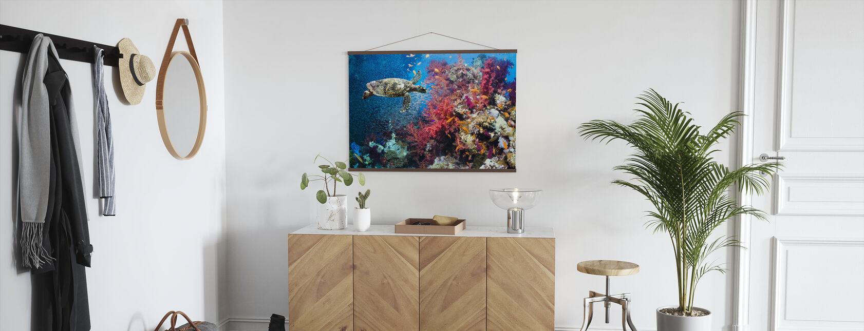 Schildkröte und Korallen - Poster - Flur