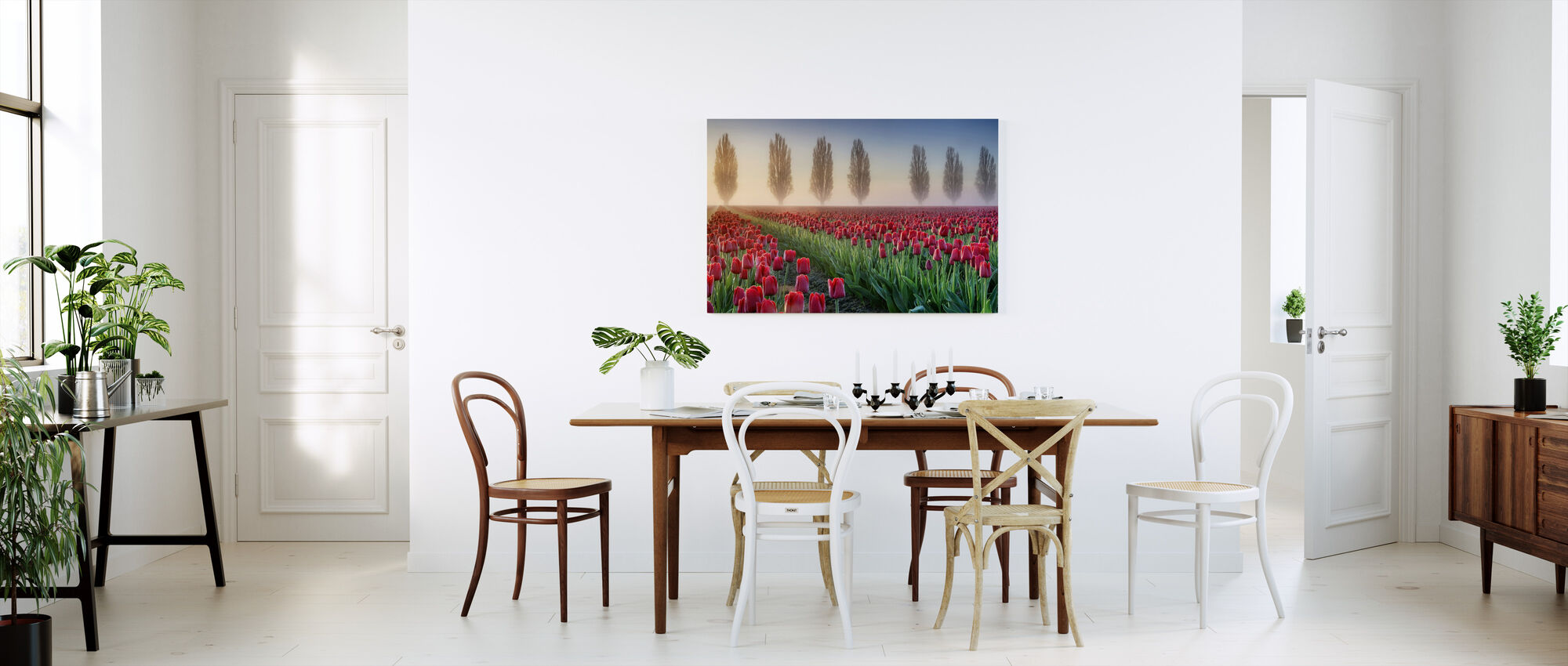 Misty Morning in Tulip Field - Canvas print - Kitchen