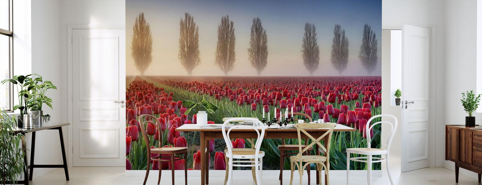 Misty Morning in Tulip Field - Wallpaper - Kitchen