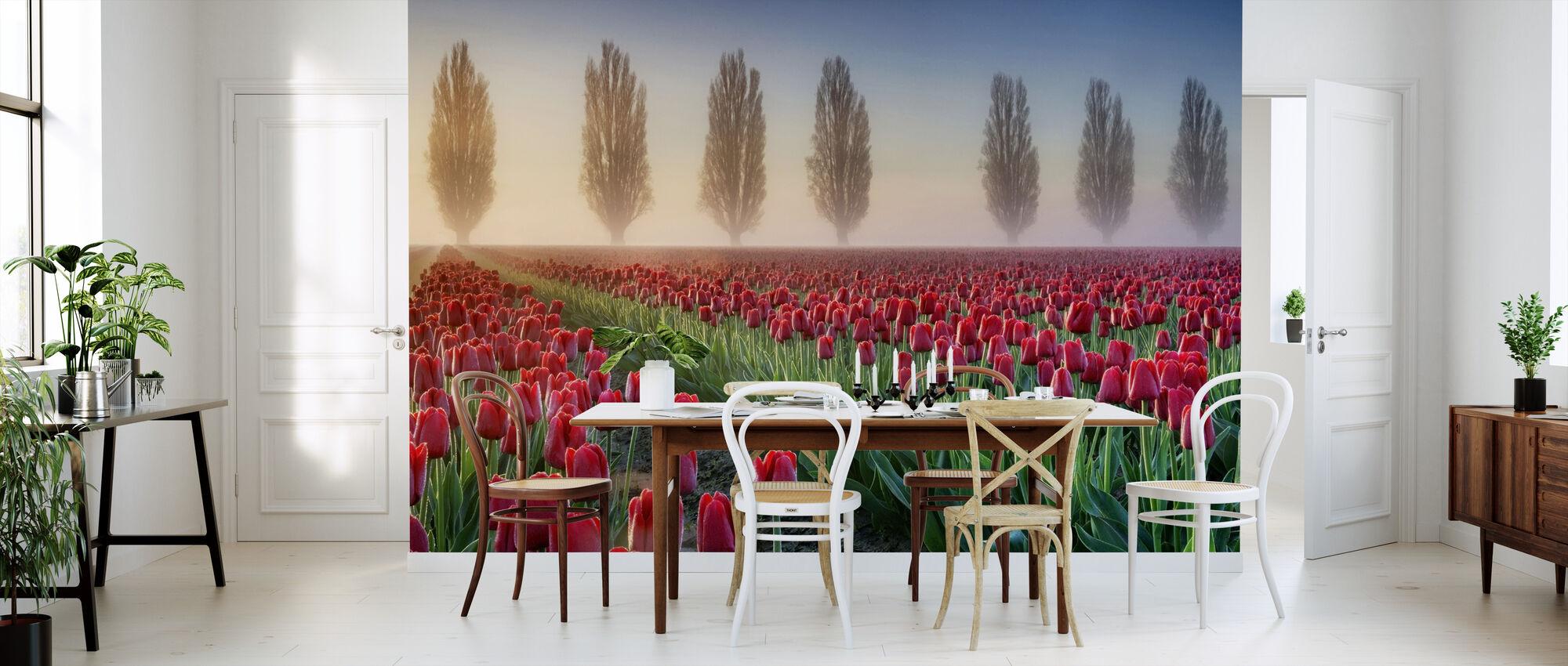 Misty Morgen i Tulip Field - Tapet - Kjøkken