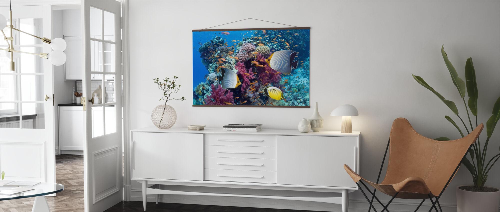 Sommerfugl Fisk - Plakat - Stue