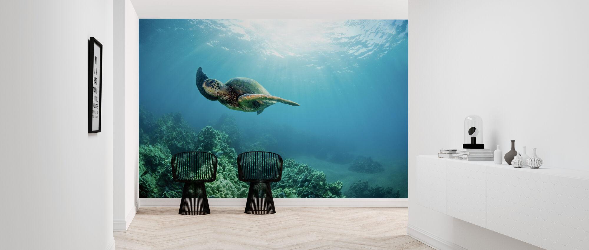 Hawaiian Green Sea Turtle - Wallpaper - Hallway