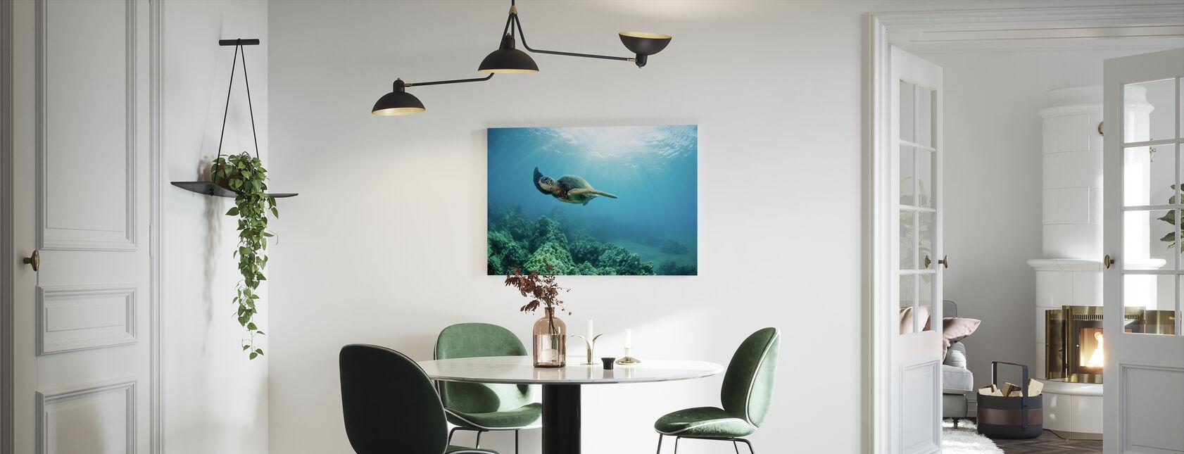 Hawaiian Green Sea Skildpadde - Billede på lærred - Køkken