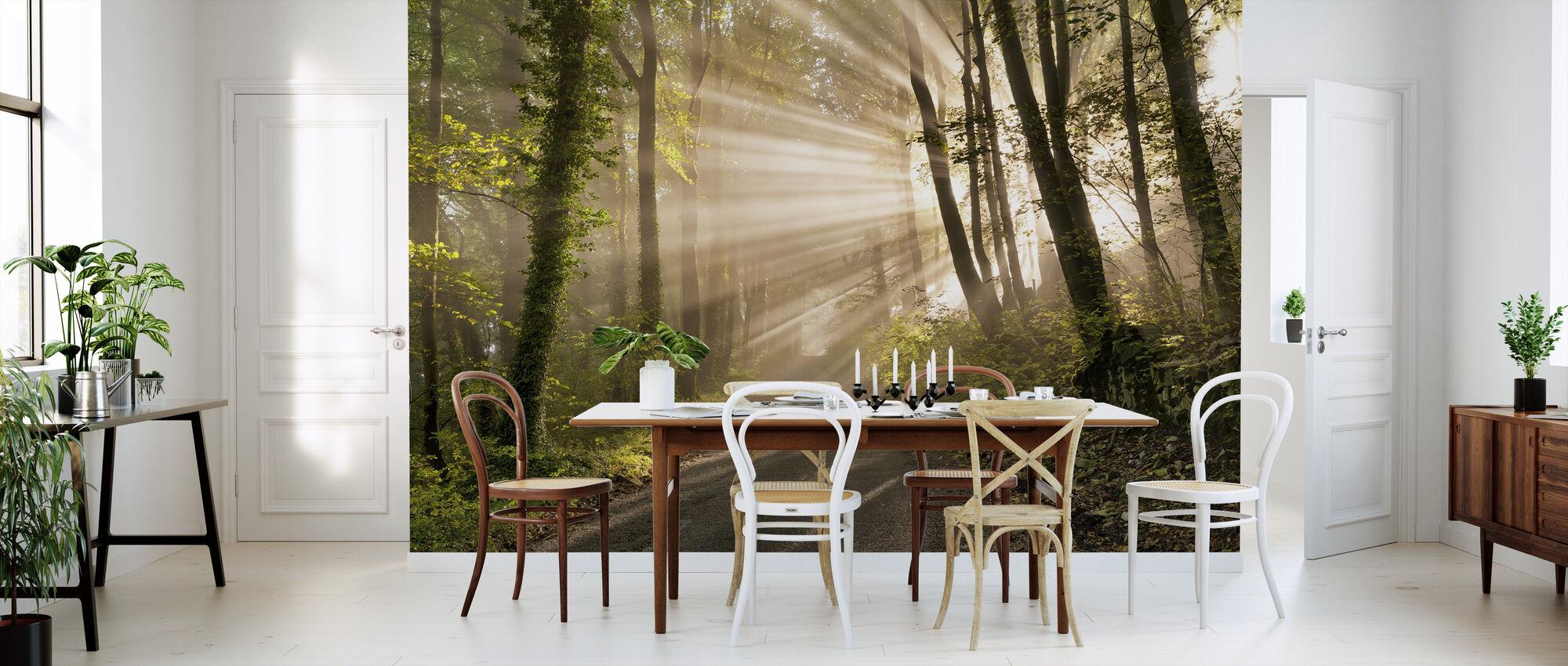 Perle stråler af sollys - Tapet - Køkken