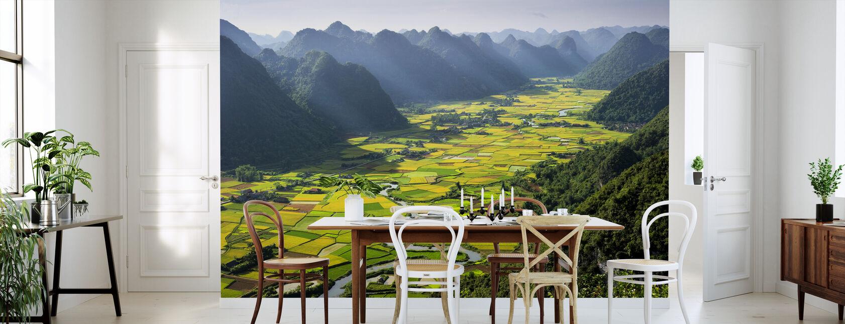 Bacha-dalen - Tapet - Kjøkken