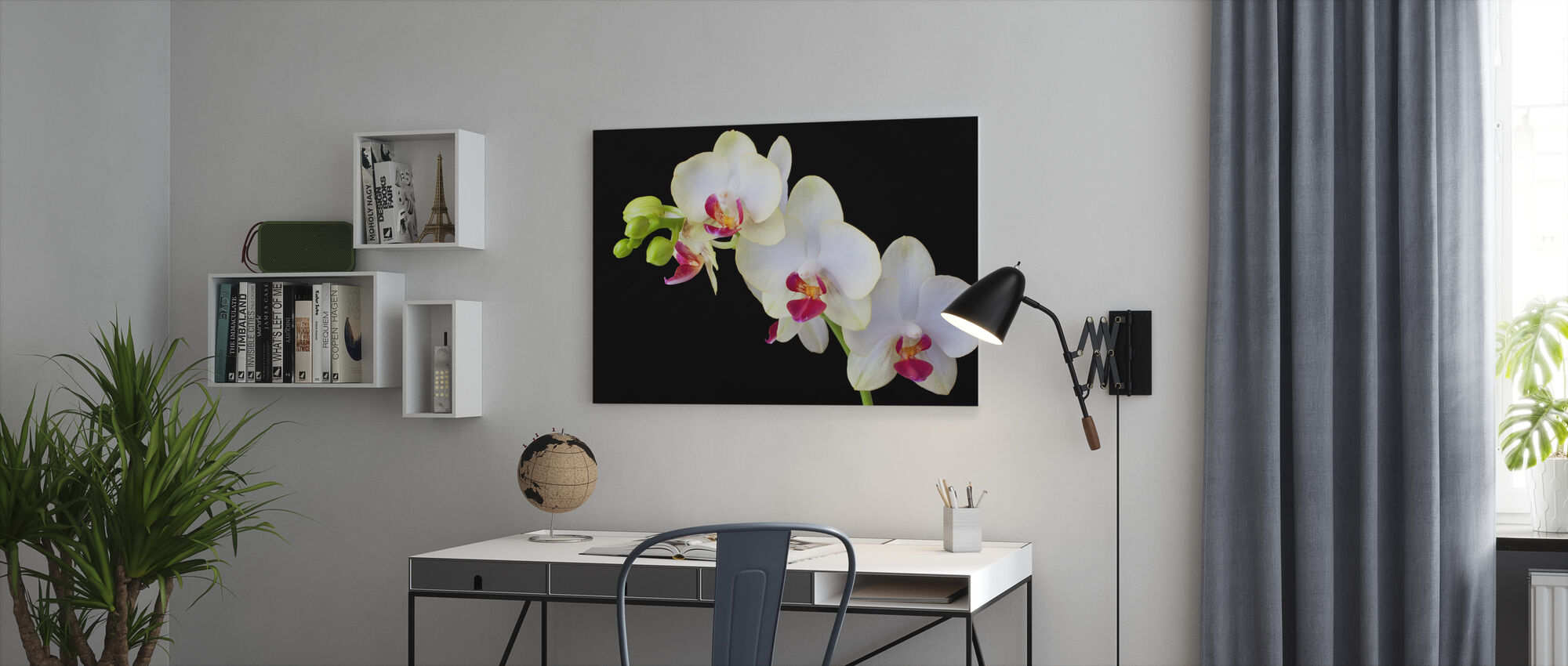 White Orchids on Black Background - Canvas print - Office
