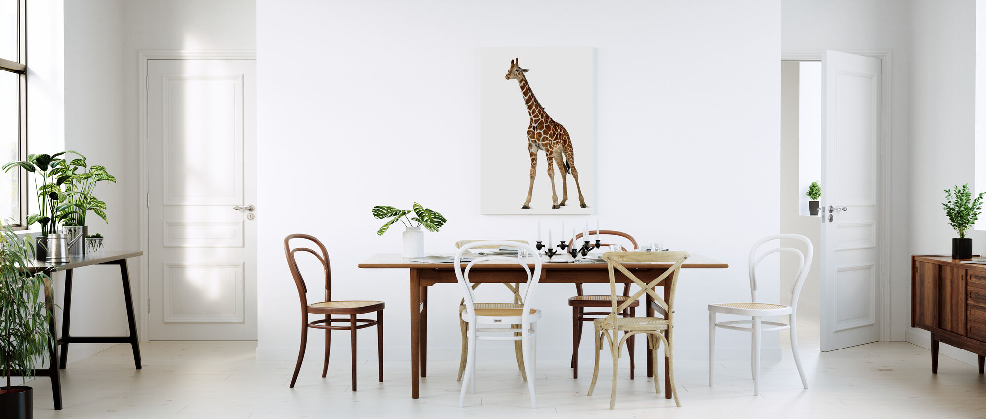 young giraffe impression sur toile en ligne pas cher photowall. Black Bedroom Furniture Sets. Home Design Ideas