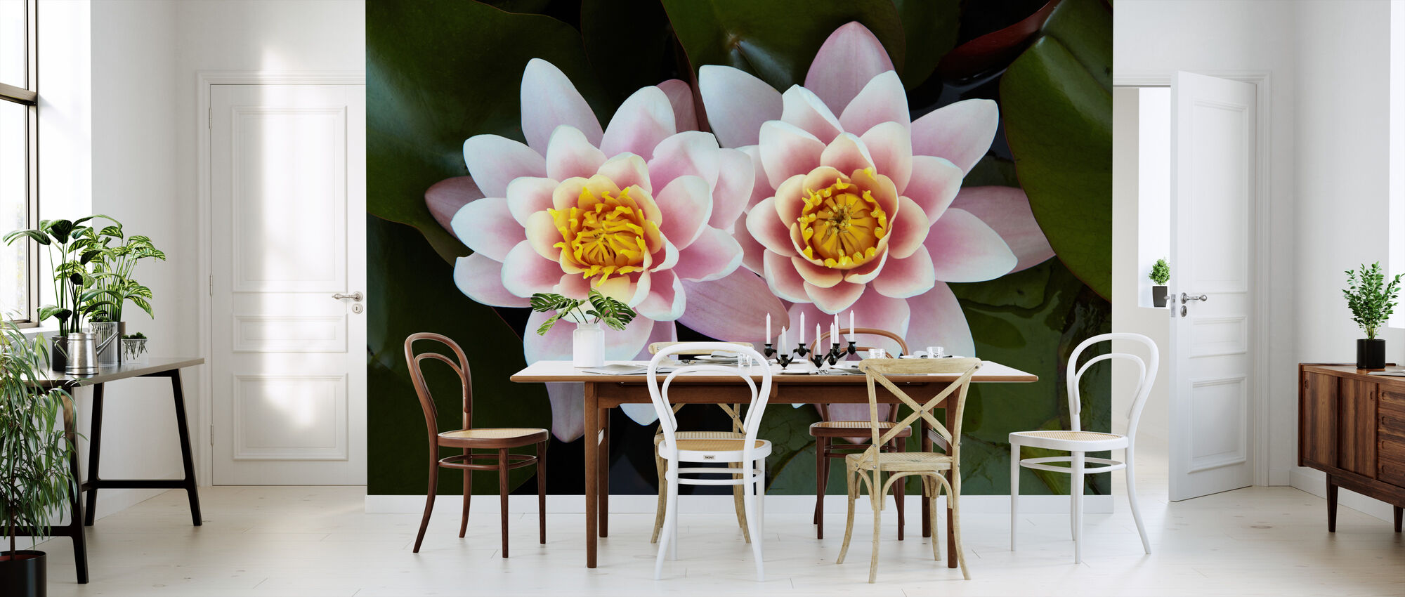 Pair of Water Lilies - Wallpaper - Kitchen