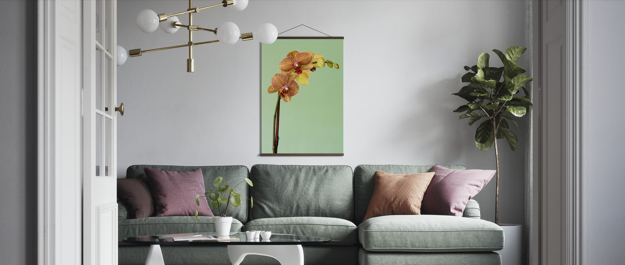 Yellow Phalaenopsis Orchid - Poster - Living Room