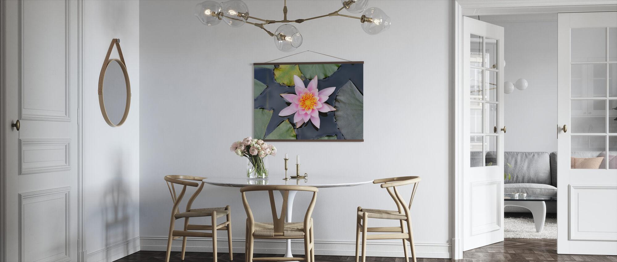 Rosa vannlilje fra oven - Plakat - Kjøkken