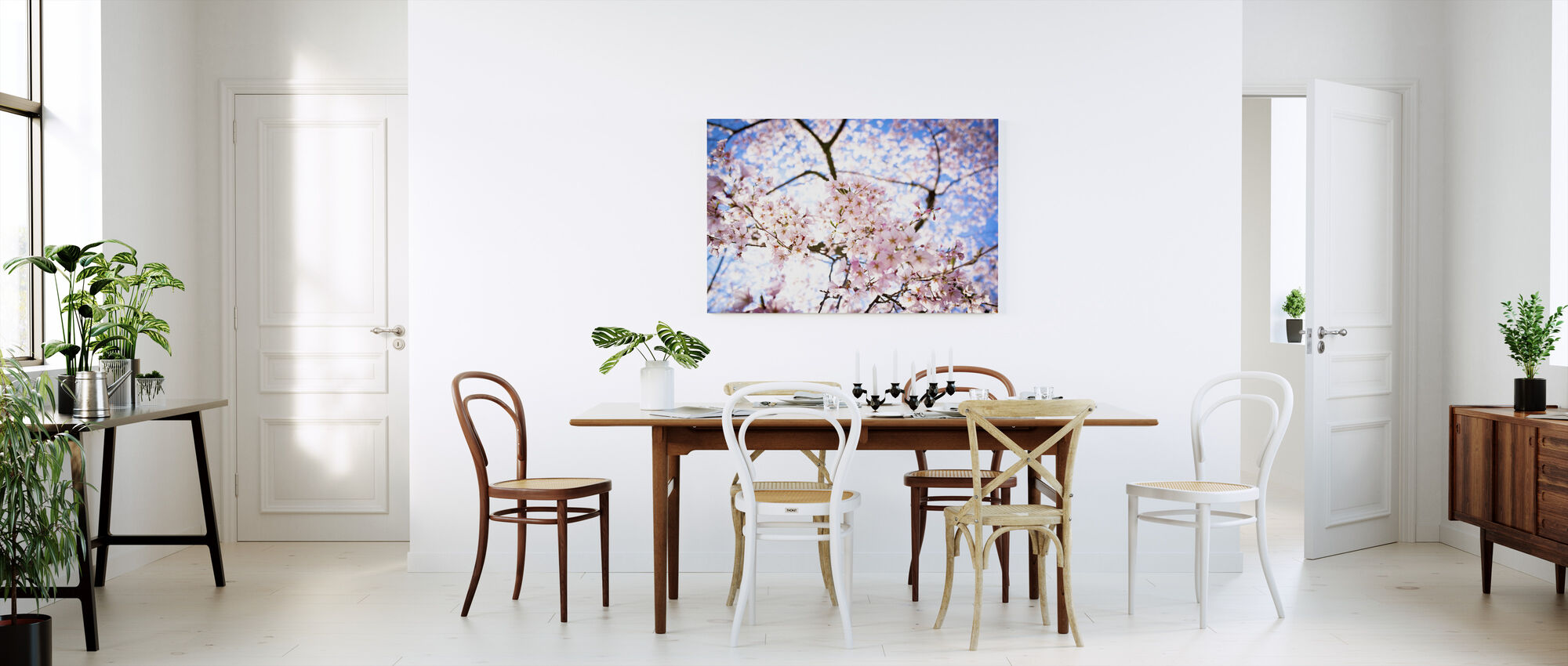 Weeping Cherry Tree - Canvas print - Kitchen