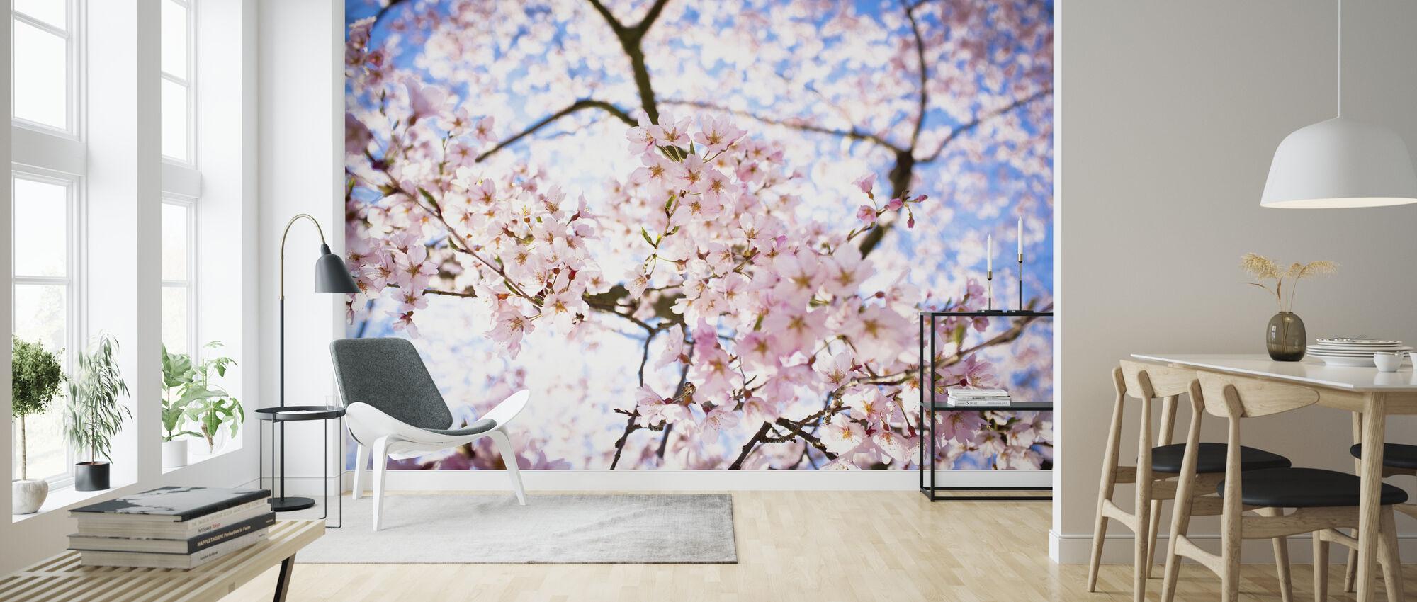 Weeping Cherry Tree Wall Murals Online Photowall