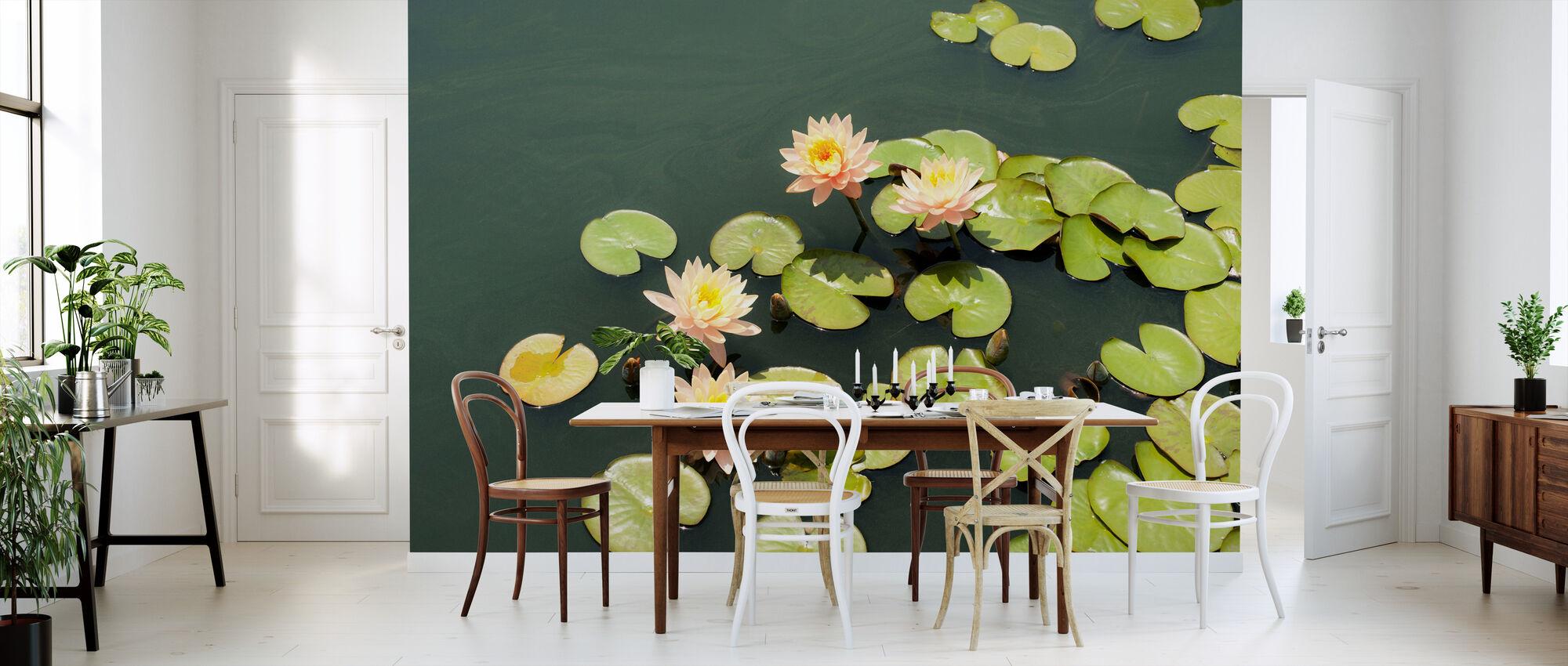 Dam med blek rosa vannliljer - Tapet - Kjøkken