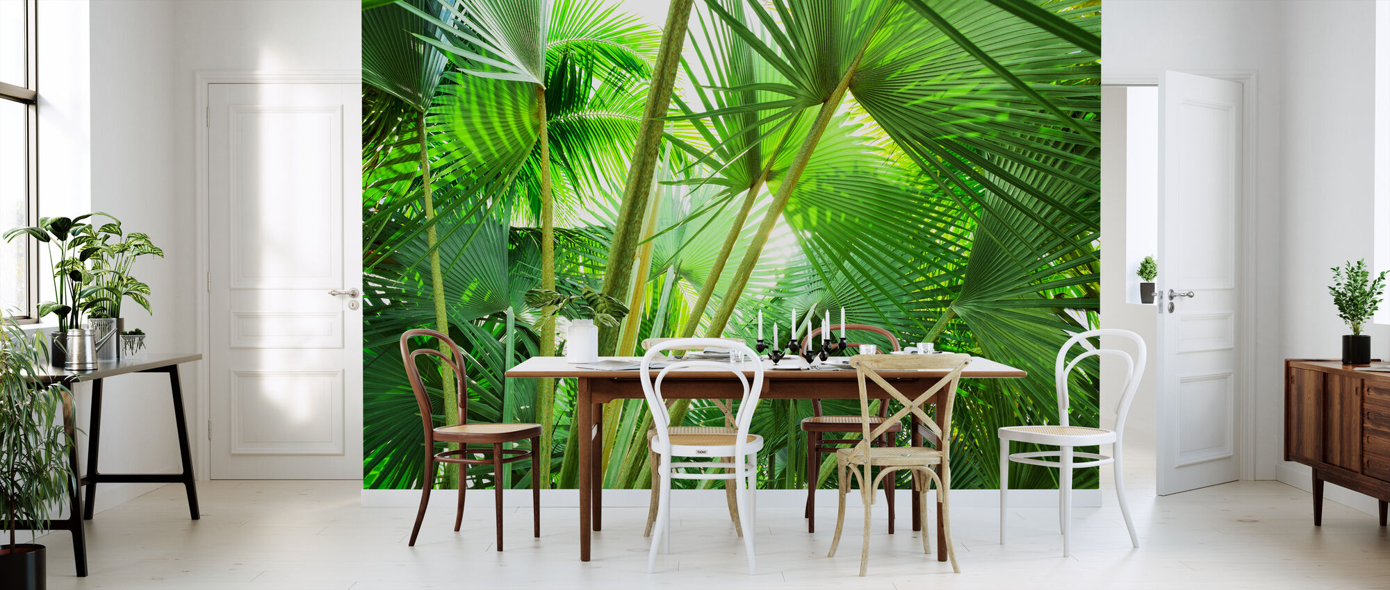 Palm Grove - Wallpaper - Kitchen