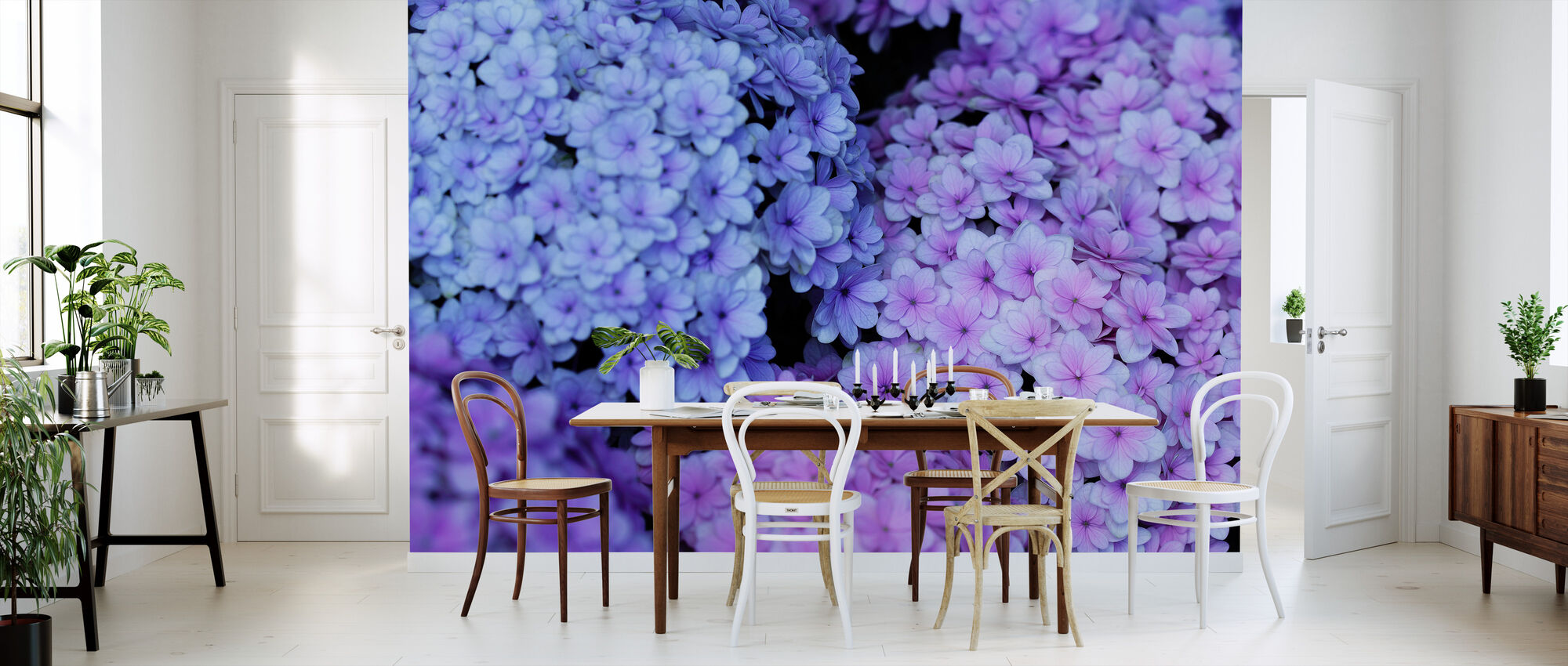 Hydrangea - Wallpaper - Kitchen