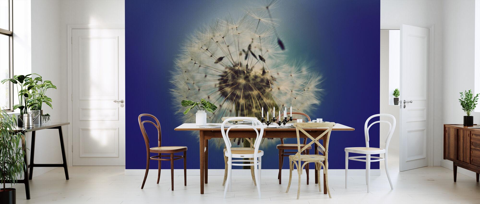 Dandelion on Blue Background - Wallpaper - Kitchen
