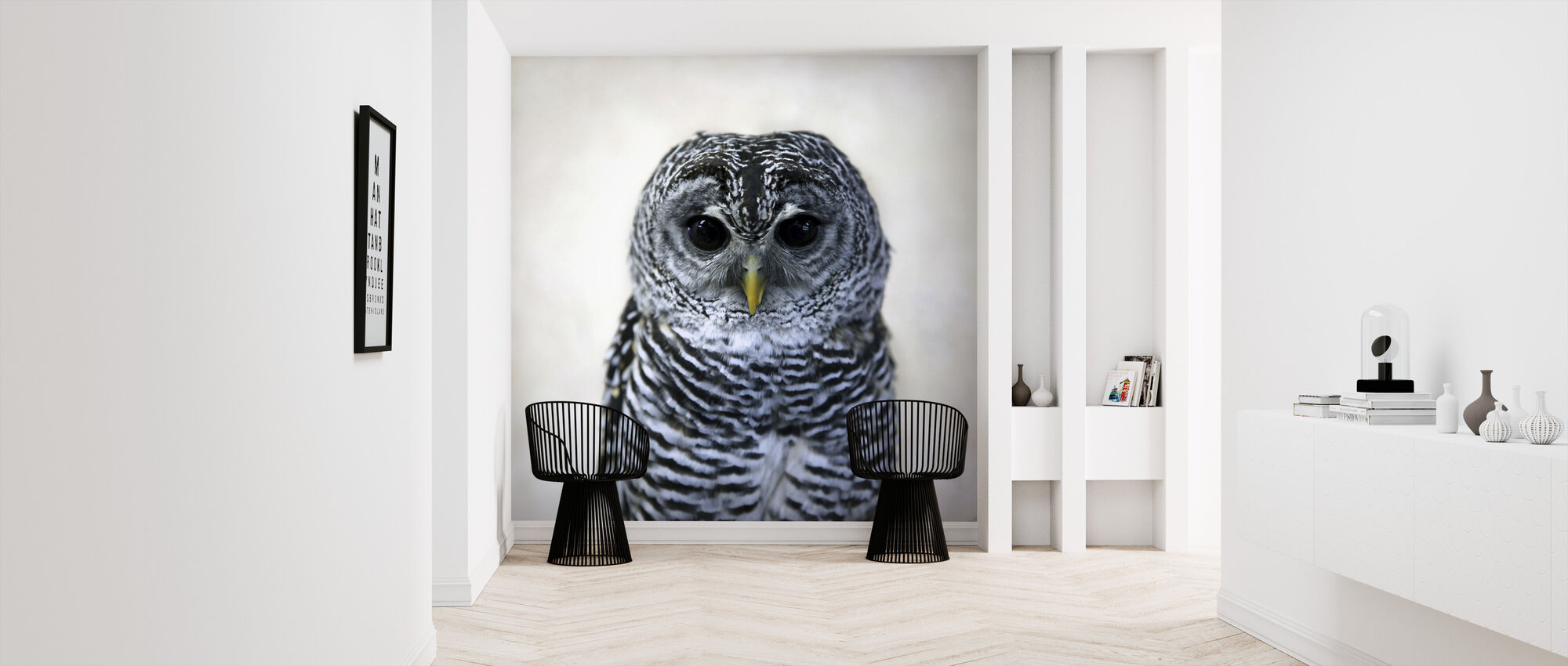 Rufous Legged Owl - Wallpaper - Hallway