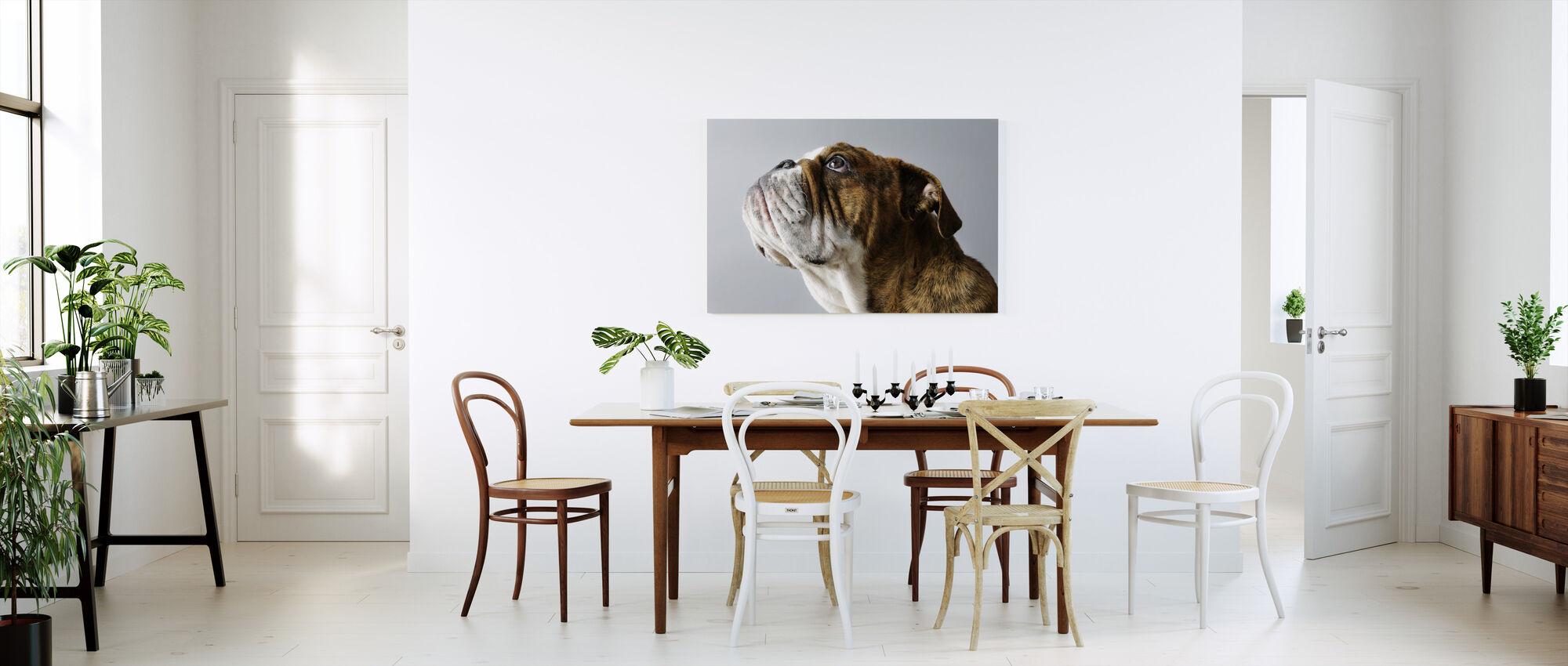 English Bulldog - Canvas print - Kitchen