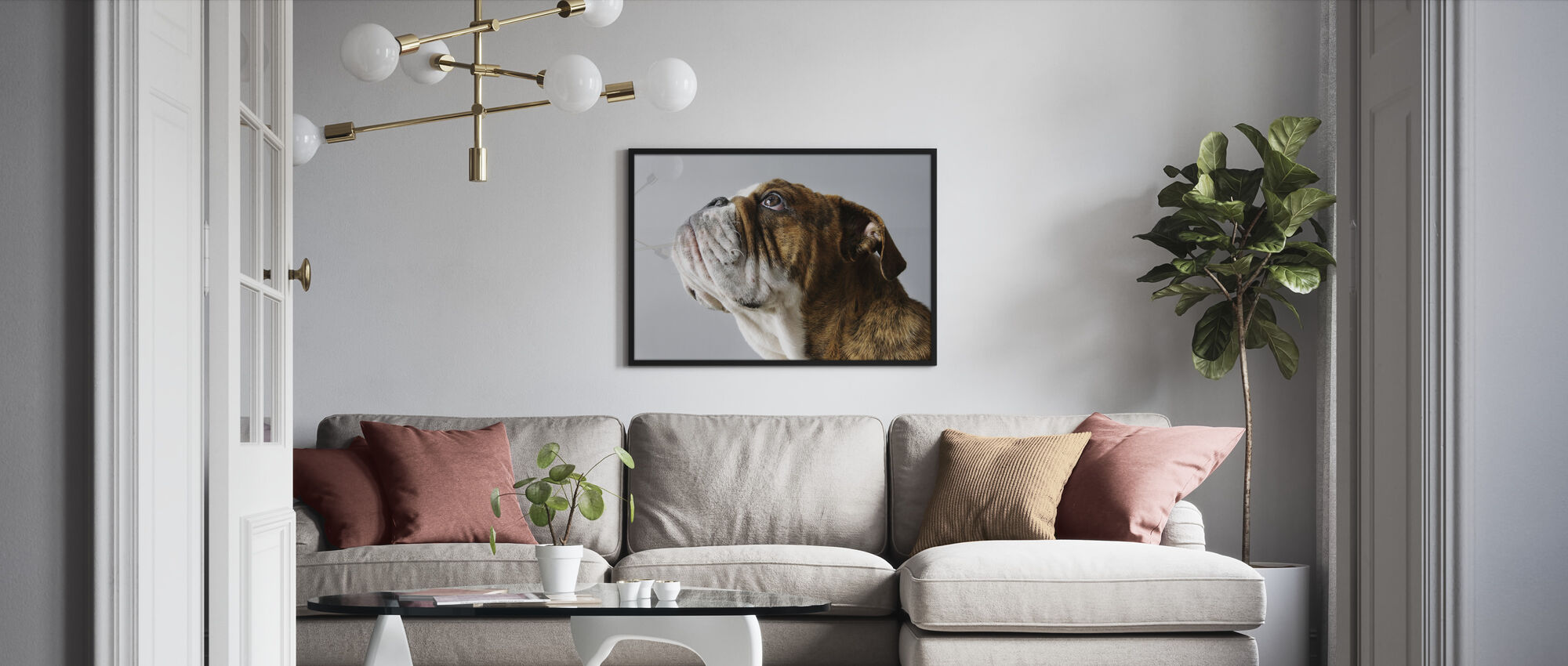 English Bulldog - Framed print - Living Room