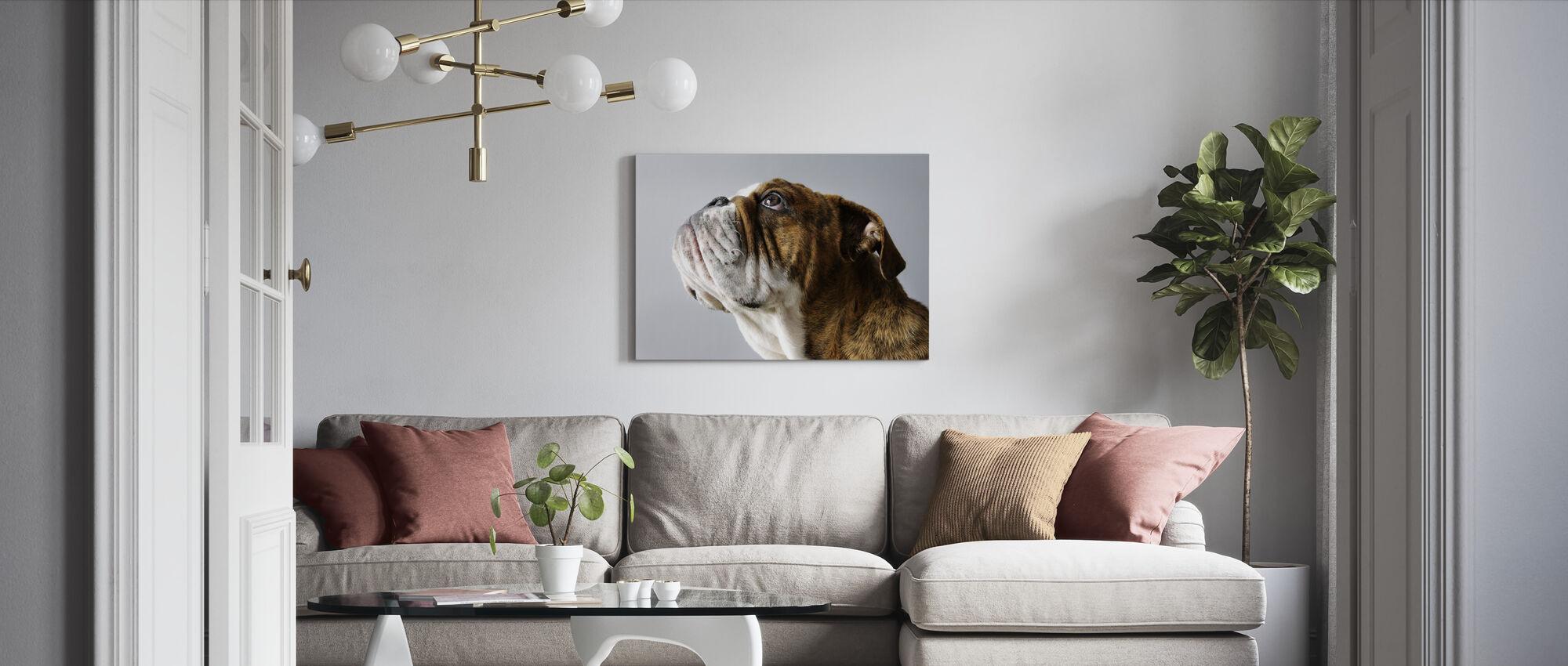 Engelska Bulldog - Canvastavla - Vardagsrum