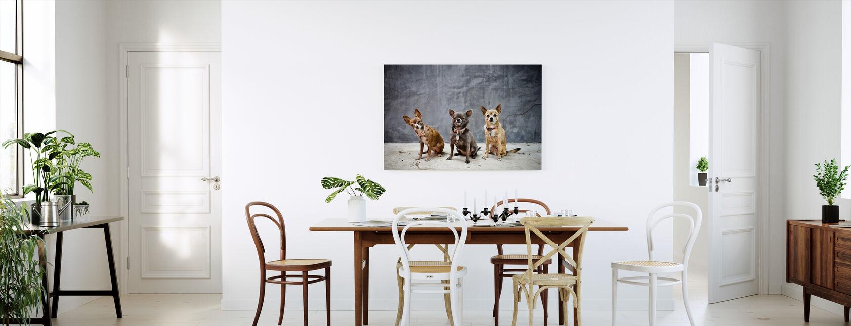 Chihuahua Trio - Canvas print - Kitchen